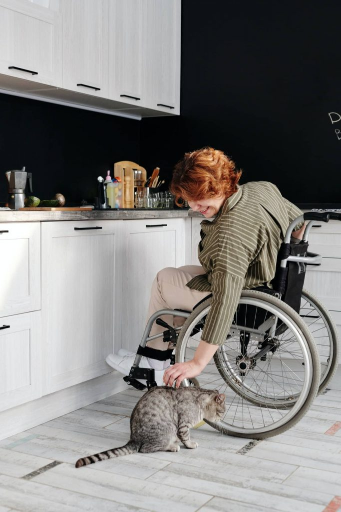 pet cat in kitchen with owner on wheelchair