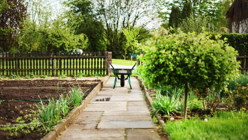 Your Springtime Outdoor Maintenance Checklist To Follow