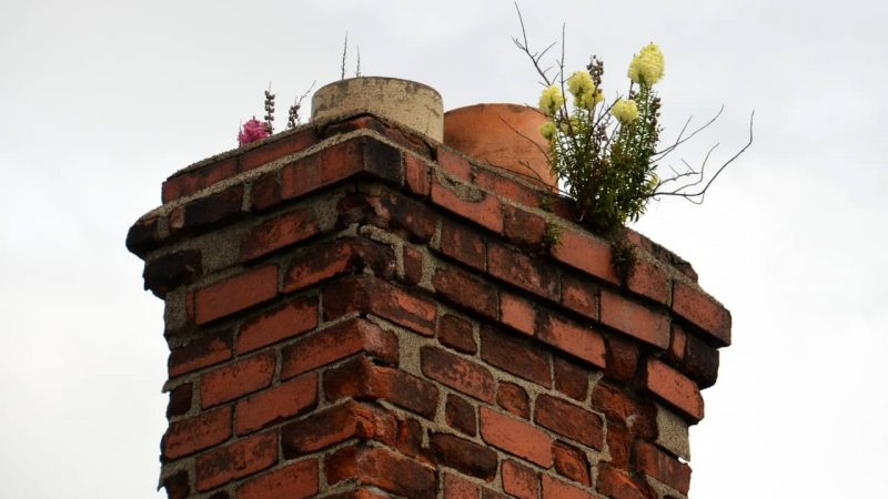 Reasons To Get Your Chimneys Cleaned Regularly By A Professional Chimney Sweep