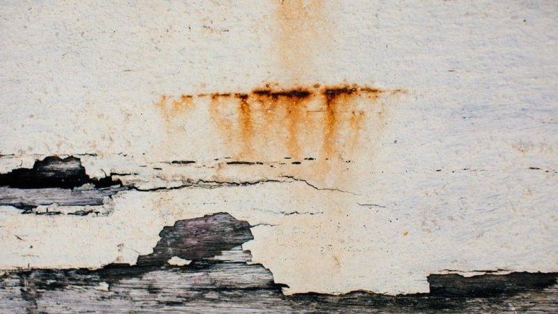 Things To Do If You Discover Water Damage In Your House