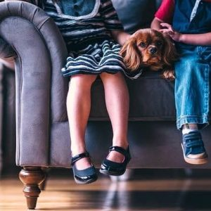 Single Parents Moving With Kids and Pets