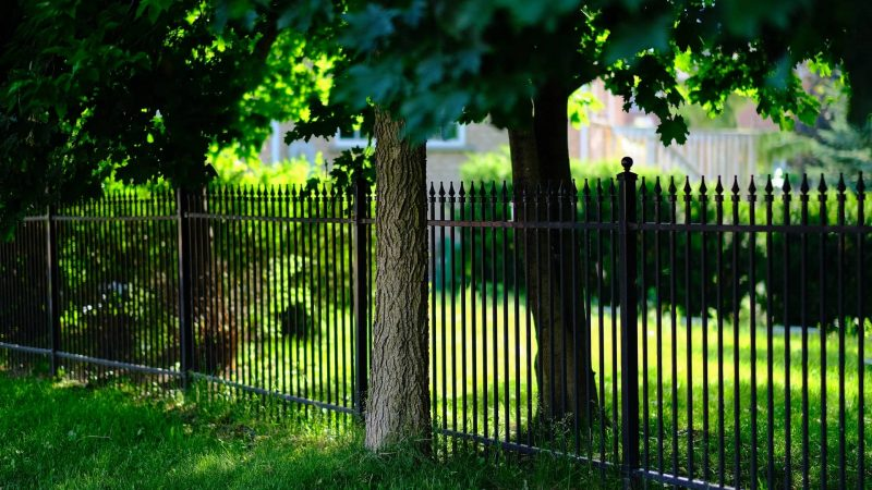 6 Tips to Consider When Choosing Fence Repair Services